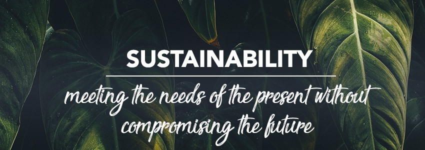 "Is ""sustainability"" just a marketing gimmick?"