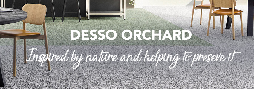 Say hello to Desso Orchard