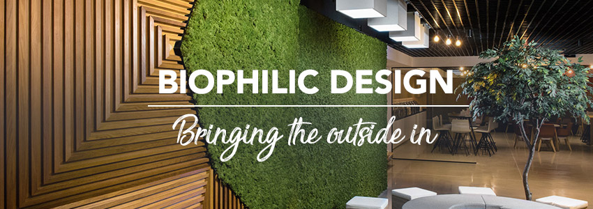 Biophilic Design - Can plants really reduce stress?