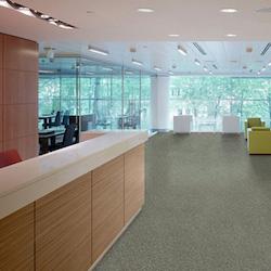 Nouveau Nature commercial carpet tiles