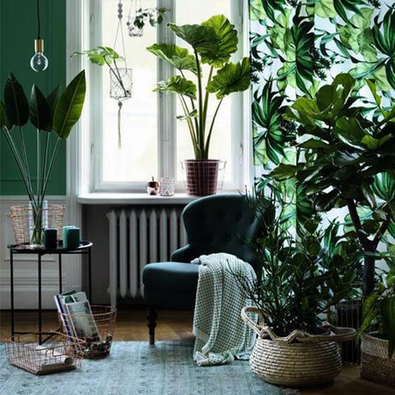 Biophilic green tone interior